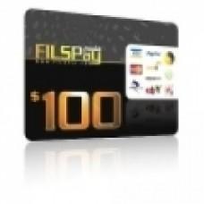 بطاقة فلسبي 100 دولار